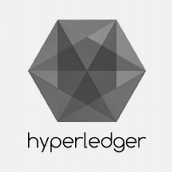 Hyperledger - FinTech project that dares for more