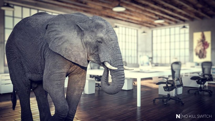 Elephants, dead fish & vomit